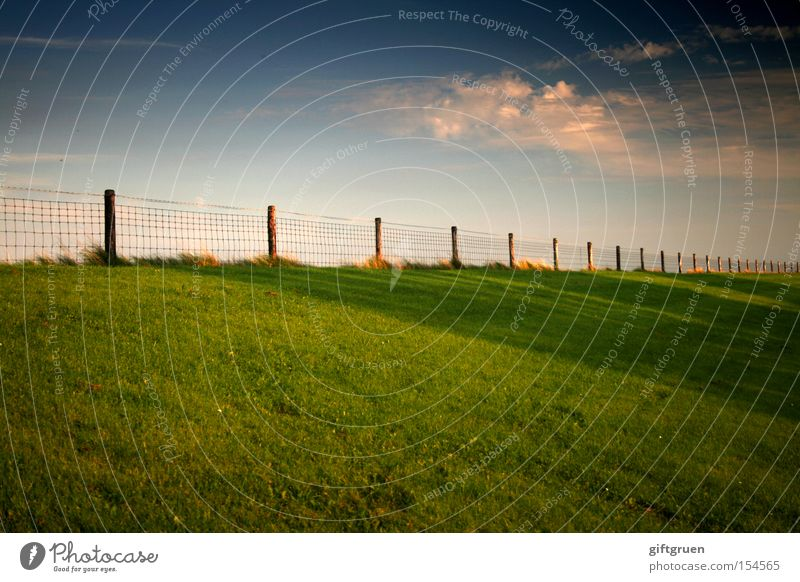 """two things are infinite..."" Dike Coast Sky Meadow Fence Infinity Far-off places Ocean North Sea Autumn Beach"