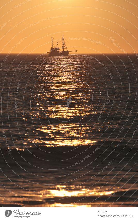 romance of fishing boats North Sea Fishing boat Seaman seafaring romance aloa-hee Work and employment To swing Infinity Yellow Gold Contentment Romance Calm