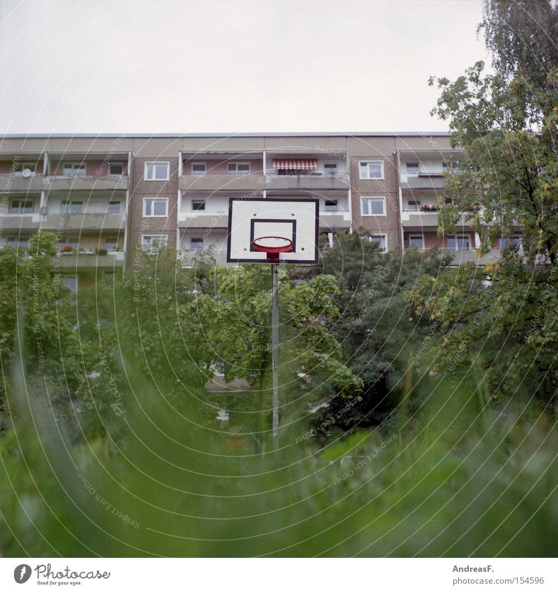 Playing in the green Ghetto Playground Sports Leisure and hobbies Basketball Grass Worm's-eye view Residential area Prefab construction