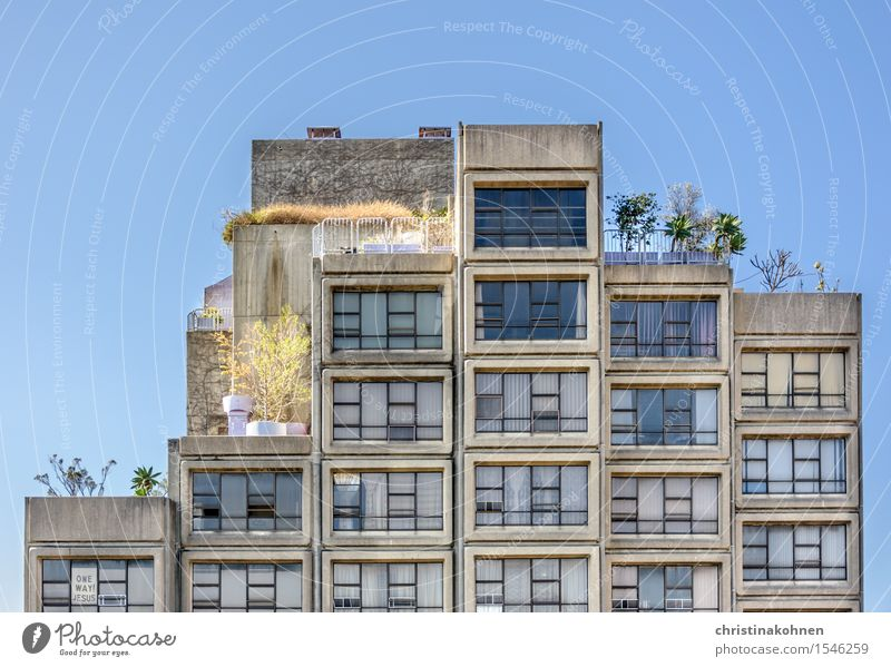 Prefabricated building in Australian. Sirius Building of Tao Gofers. Sky Cloudless sky Plant Tree Sydney Downtown Deserted House (Residential Structure)