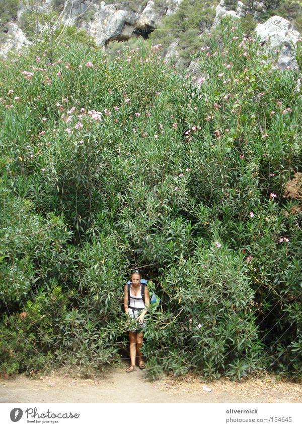 under the oleander Oleander Flower Bushes Woman Sardinia Plant Large Blossom Summer