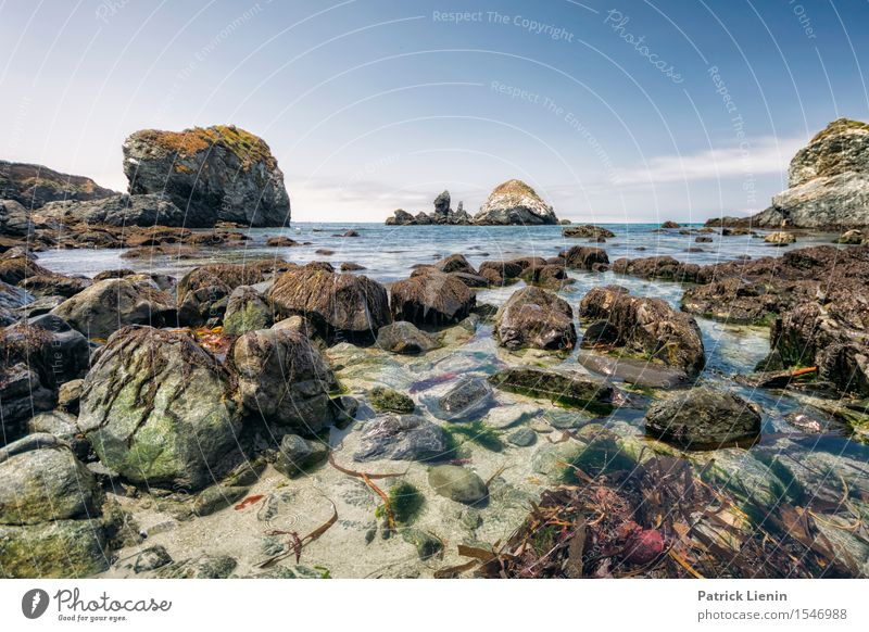 Big Sur Wellness Contentment Senses Relaxation Vacation & Travel Tourism Adventure Freedom Summer Beach Ocean Environment Nature Landscape Sky Clouds Climate