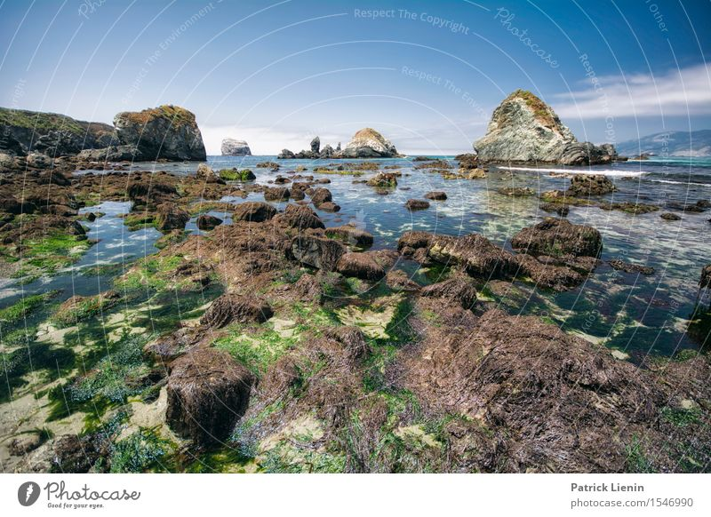 Pacific Coast Sky Summer Ocean Landscape Clouds Beach Warmth Rock Tourism Weather USA Climate Adventure Climate change Waterfall