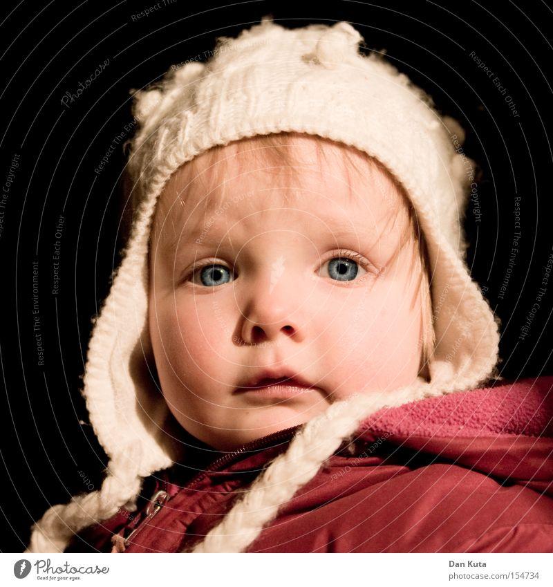 Little Angel Child Toddler Looking Amazed Interesting Curiosity Joy Cheek Sweet Cute Alert Blonde Contentment Eyes Happy