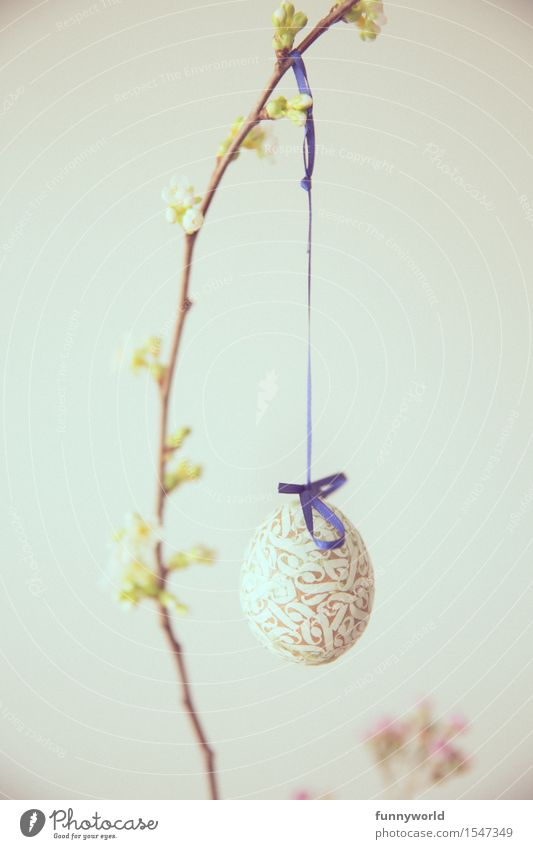 Long string with egg Feasts & Celebrations Easter Sign Hang Uniqueness Easter egg Decoration Religion and faith Belief Spring Branch Twig Bud Cherry String Blue