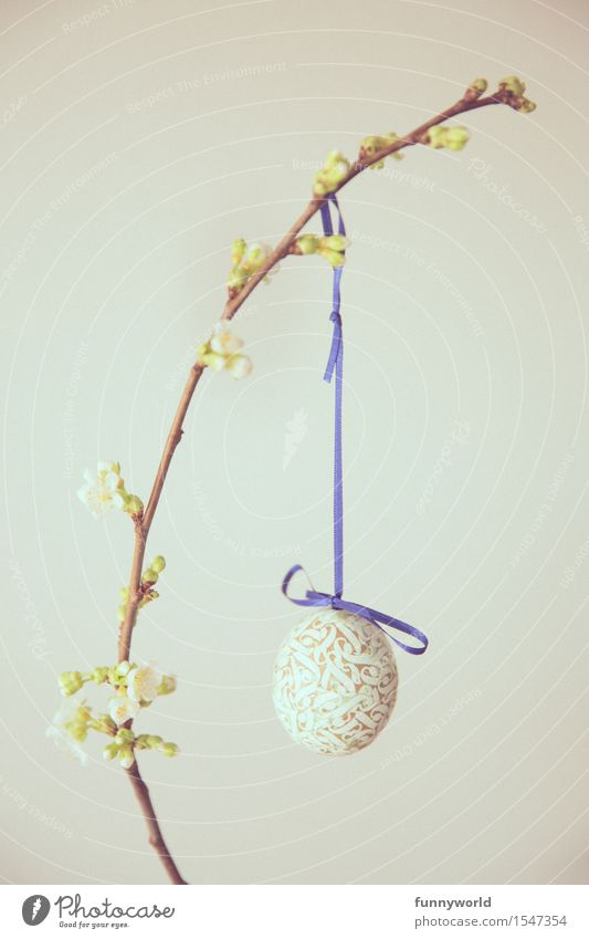 Blue Swallow Easter Hang Easter egg Self-made Bow Twig Twigs and branches Cherry Cherry blossom 1 Single Minimalistic Bud Vintage Colour photo Deserted
