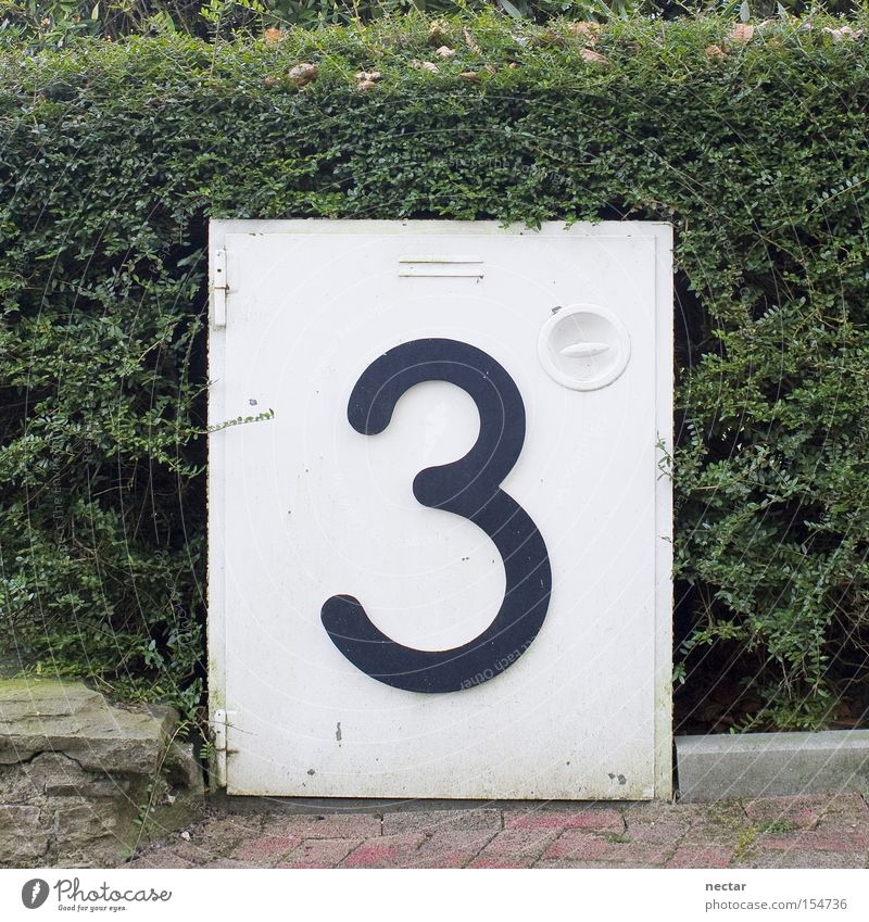 Green Work and employment Garden 3 Telecommunications Digits and numbers Box Email Paving stone Hedge House number Front garden Distributor