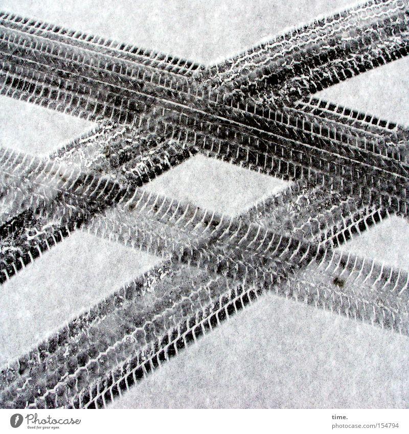 Street Snow Search Transport Asphalt Transience Tire tread Find Parallel Cross Impression Animal tracks Imprint Skid marks