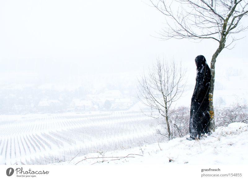 longing Longing Winter Old fogey Snow Snowfall Landscape Vineyard Mystic Romance Emotions Michaelsberg Fantasy literature