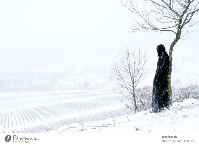 Winter Snow Emotions Snowfall Landscape Romance Longing Mystic Fantasy literature Vineyard Old fogey