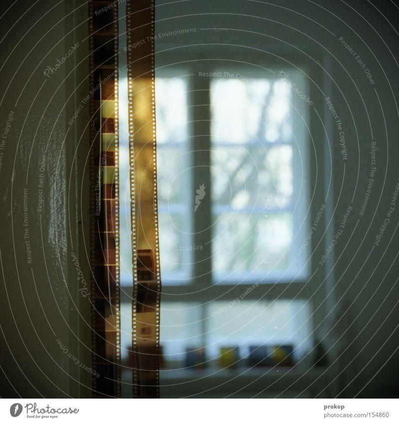 Joy Window Photography Flat (apartment) Kitchen Film industry Image Analog Negative