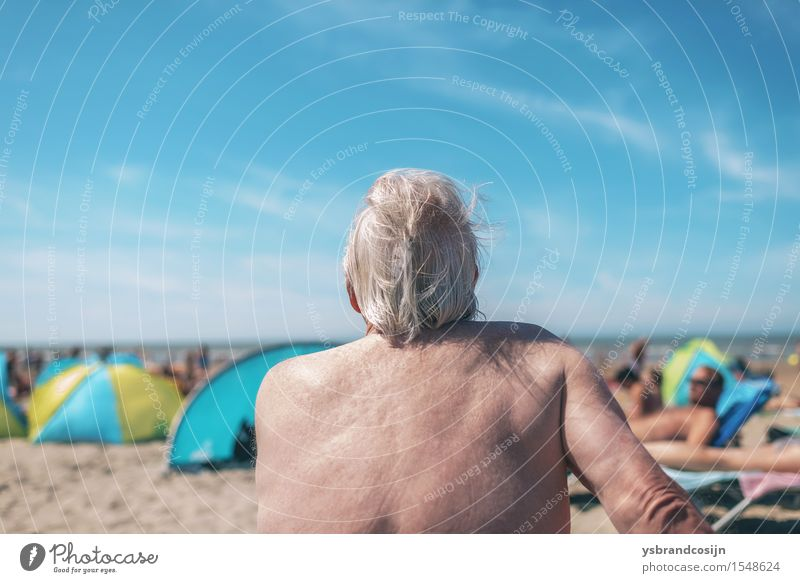 Elderly man enjoying himself at the beach Lifestyle Relaxation Vacation & Travel Summer Beach Retirement Man Adults Coast Old Hot Behind holiday seaside senior
