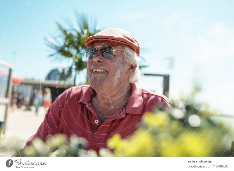 Happy fashionable senior man in tropical sunshine Wellness Relaxation Vacation & Travel Summer Man Adults Sunglasses Old Smiling Sit Hip & trendy pensioner