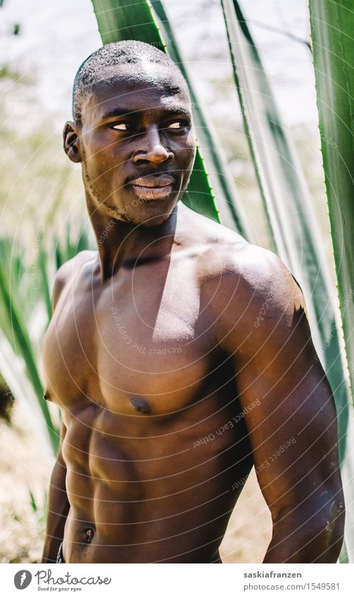 Human being Youth (Young adults) Man Naked Plant Beautiful Young man Eroticism Adults Sports Lifestyle Fashion Masculine Modern Esthetic Fitness