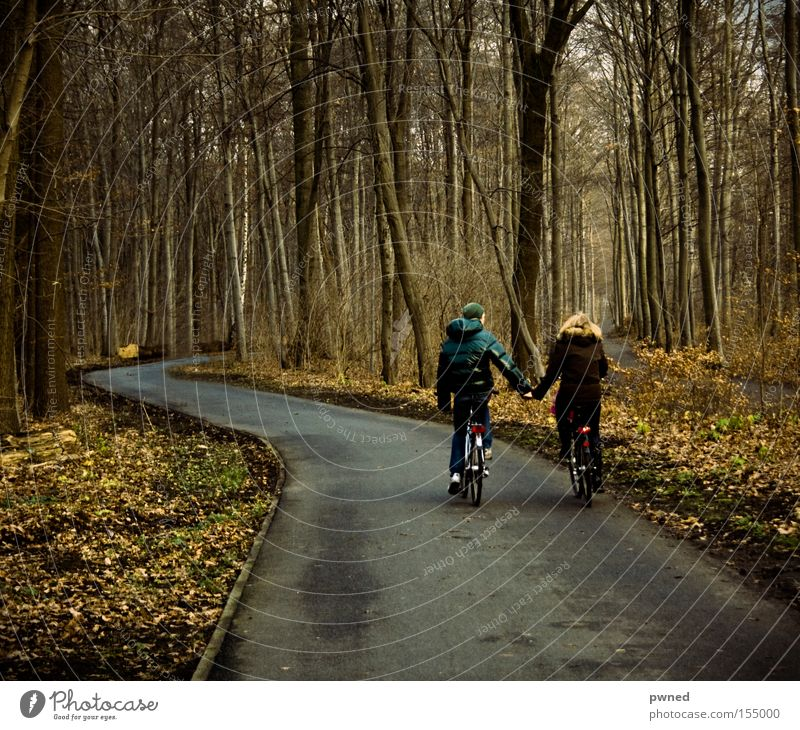 YEAH KIIIITCH Bicycle Hold hands Forest Youth (Young adults) Leaf Winter Romance Love couple