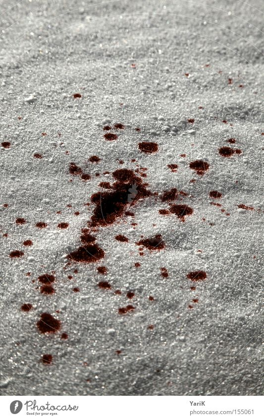 Red Winter Dark Cold Snow Gray Ice Dangerous Drop Blood Inject Snowflake Blood stain