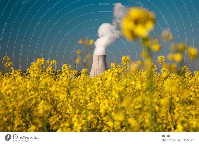 bioelectricity Nuclear Power Plant Electricity Bio-energy Renewable energy Electricity generating station Canola Bio-fuel Bio-diesel Yellow Ecological Industry