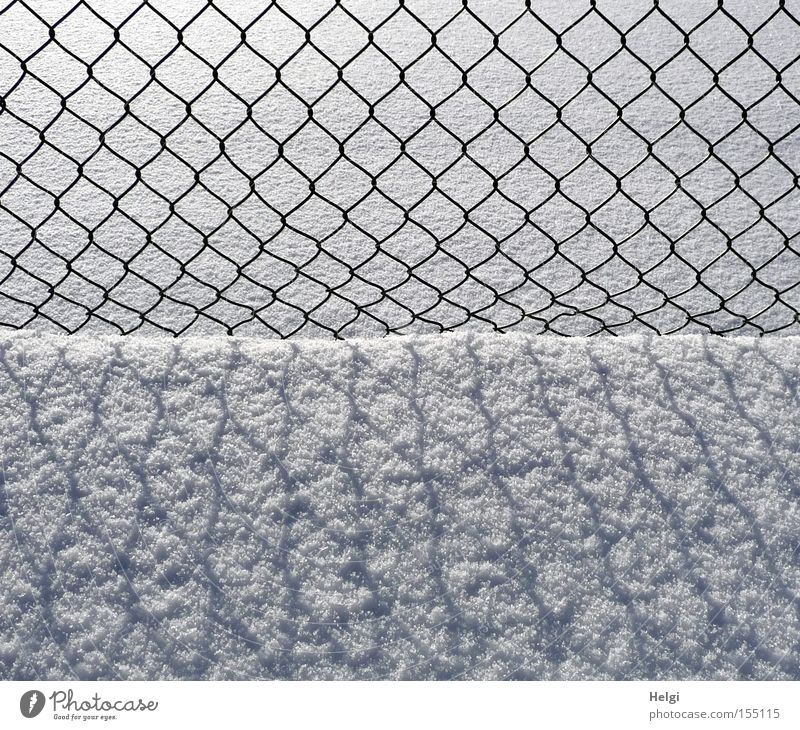 Wire mesh fence ... Fence Wire netting Wire netting fence Winter January Snow Cold Light Shadow Pattern Structures and shapes Black White Obscure Helgi