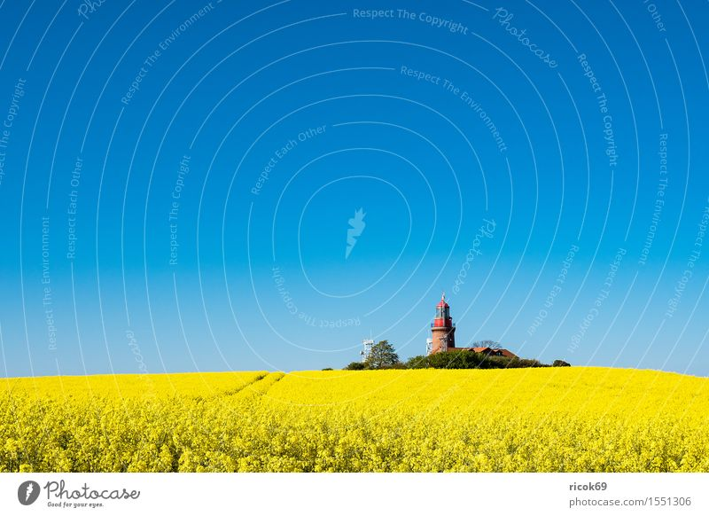 The lighthouse of Bastorf Relaxation Vacation & Travel Tourism Summer Agriculture Forestry Nature Landscape Cloudless sky Field Coast Lighthouse Architecture