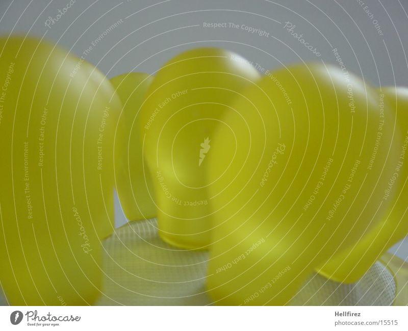 Yellow Brush Burl Photographic technology