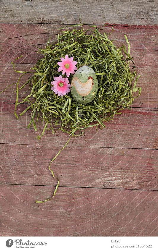 gockling Feasts & Celebrations Easter Decoration Religion and faith Tradition Easter egg Easter Bunny Easter egg nest Nest Moss Grass Wood Vintage Flower