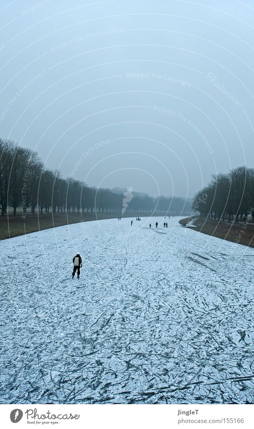 flight thoughts Winter Blue Fog Avenue Ice-skates Freedom Bad weather Sewer Snow
