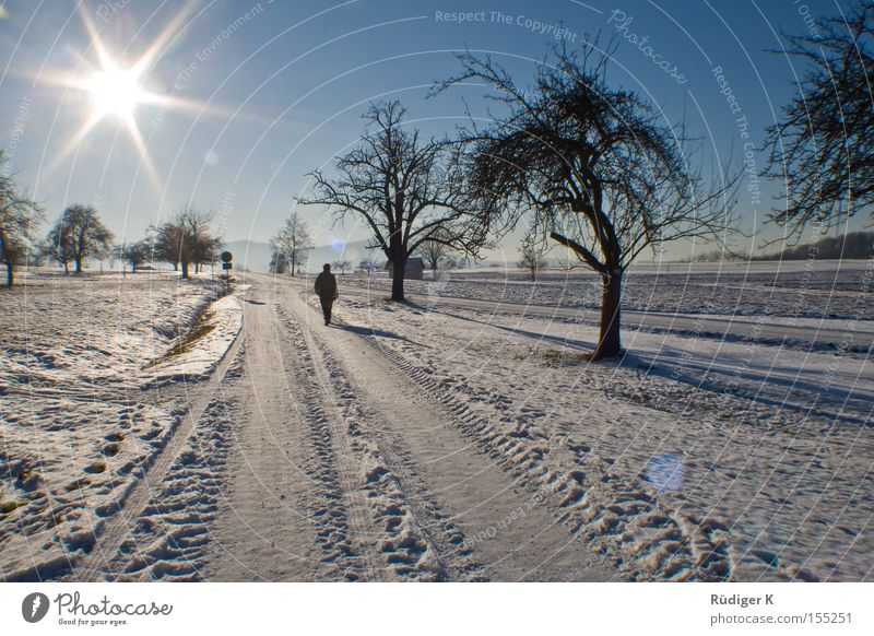 Walking alone Loneliness Snow Sun Sky Tree Lanes & trails Back-light 7 Human being To go for a walk Winter Tiefenbachtal star effect