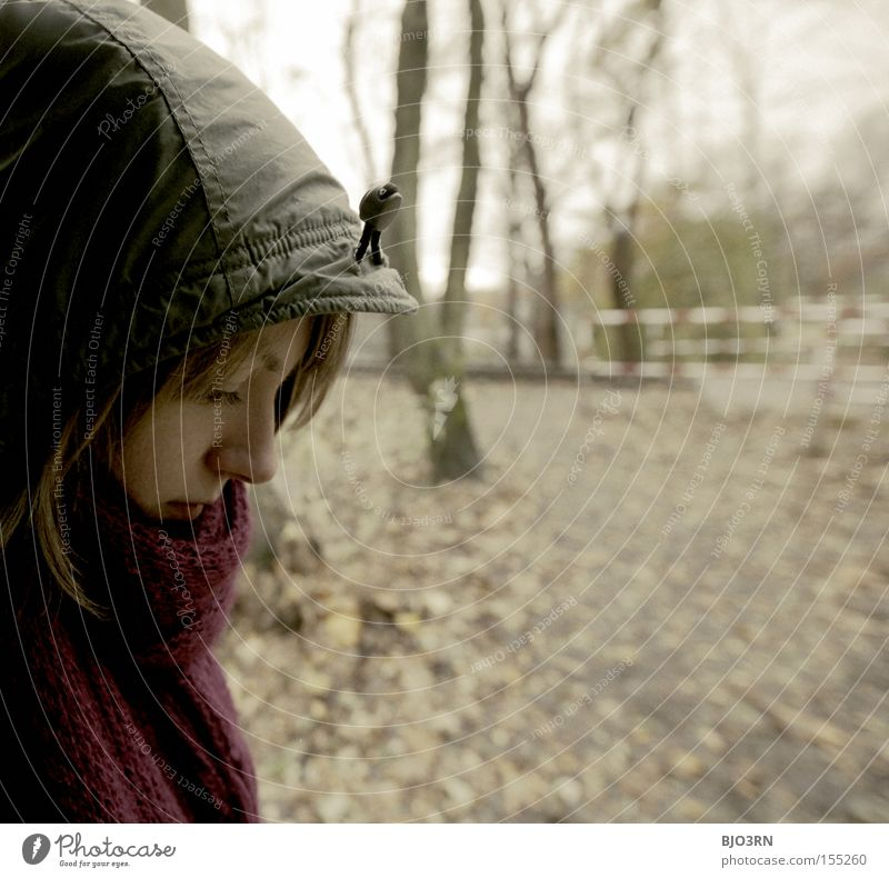 118260000 times Systole/Diastole Autumn Woman Dreamily Thought Evening Think Autumnal Face Section of image Scarf Cap Tree Leaf