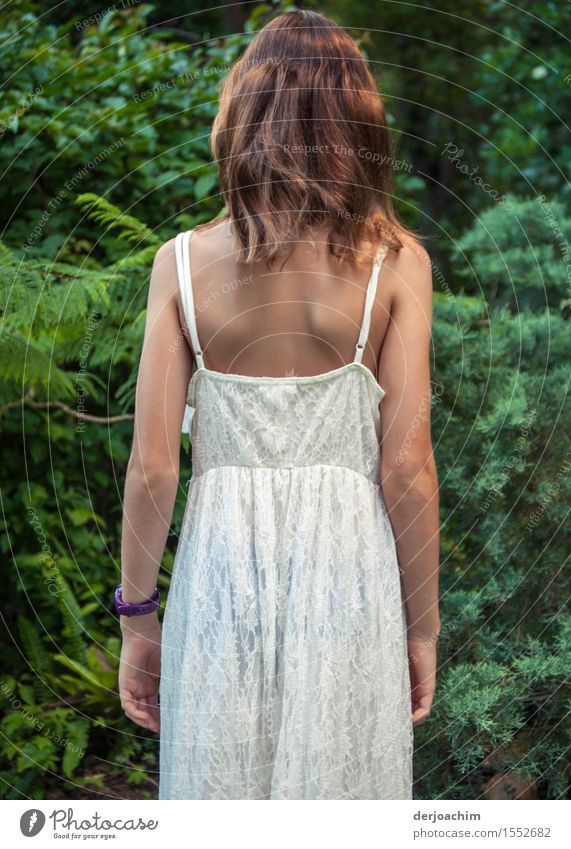 inquisitorial Joy Contentment Summer Edge of the forest Feminine Girl Back 1 Human being 8 - 13 years Child Infancy Nature Beautiful weather Forest Queensland