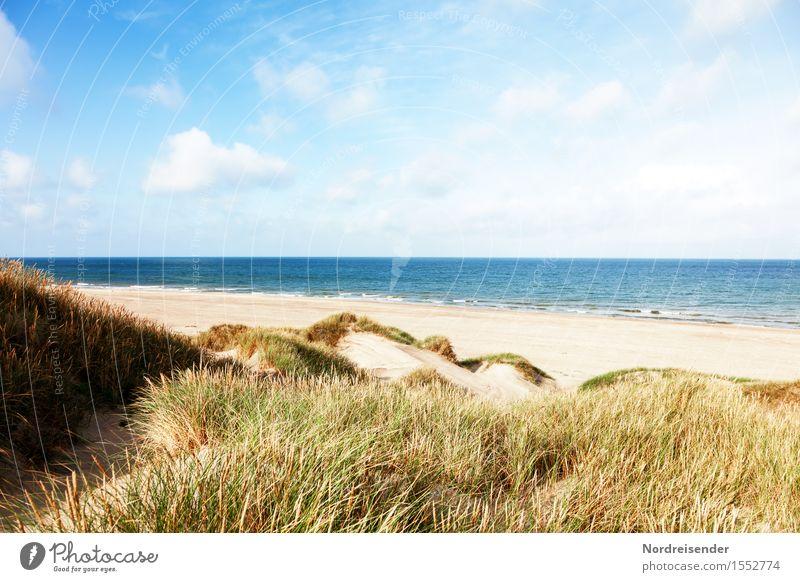 Sky Nature Vacation & Travel Summer Water Sun Ocean Relaxation Landscape Clouds Beach Grass Sand Air Wind Beautiful weather