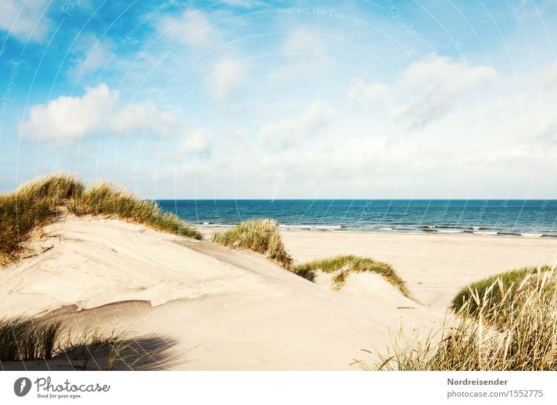 Nature Vacation & Travel Summer Water Sun Ocean Landscape Clouds Far-off places Beach Grass Freedom Sand Horizon Tourism Idyll