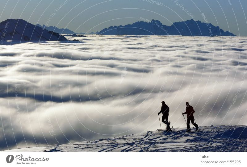 Winter Clouds Mountain Skiing Tourism Leisure and hobbies Skis Winter sports Ski tour Cloud cover Cloud field Forest of Bregenz Band of cloud