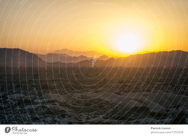 Desert Sunset Vacation & Travel Tourism Trip Adventure Far-off places Summer Mountain Environment Landscape Elements Earth Sand Sky Cloudless sky Climate