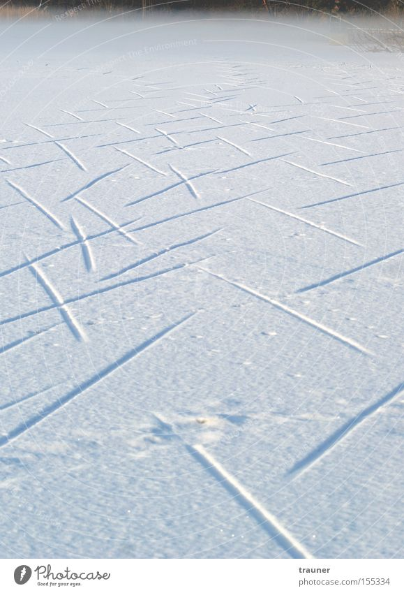 Winter Dark Cold Snow Lanes & trails Lake Ice Fog Empty Tracks Frozen Animal tracks