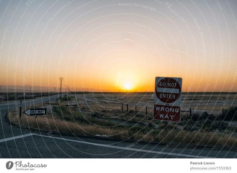 Wrong Way Sky Nature Vacation & Travel Summer Sun Landscape Environment Street Warmth Horizon Weather Transport Earth Climate Beautiful weather Elements