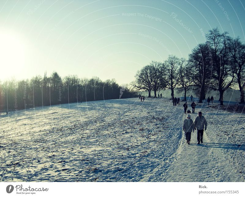 Human being Tree Sun Winter Cold Snow Lanes & trails Ice Going Walking Running sports To go for a walk Tracks Smoothness Light