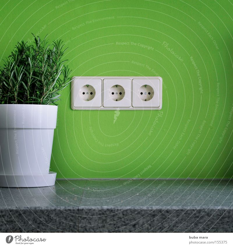 White Green Plant Energy Electricity Kitchen Herbs and spices Organic produce Ecological Pot Organic farming Household Sustainability Socket Rosemary