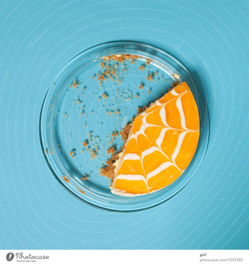 Cake 1 Food Fruit Orange Dessert Tangerine Nutrition Eating To have a coffee Plate Feasts & Celebrations Mother's Day Easter Birthday Esthetic Delicious Round