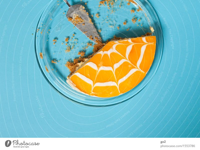 Blue Joy Yellow Eating Feasts & Celebrations Food Fruit Orange Birthday Nutrition Esthetic To enjoy Joie de vivre (Vitality) Sweet Round