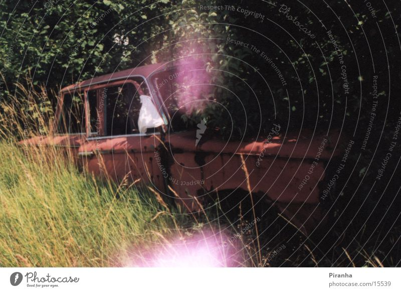 Heiligs Blechle Scrap metal Bushes Hedge Transport Car Wreck Rust