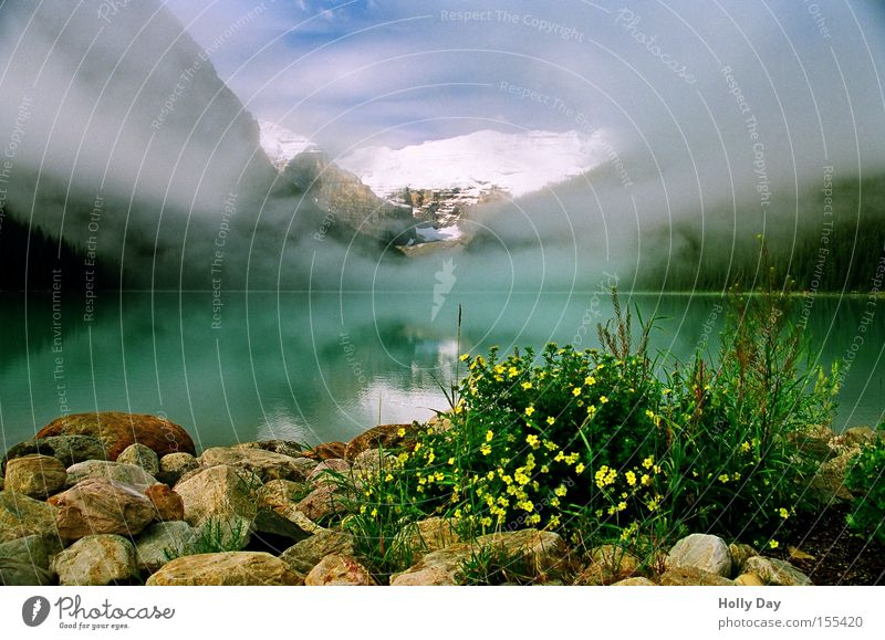 Water Flower Clouds Snow Mountain Lake Fog Peak Reflection Canada Vail Body of water Alberta Rocky Mountains Banff National Park