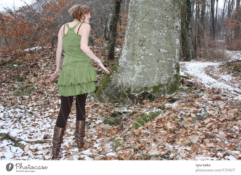 Woman Tree Green Winter Leaf Forest Cold To go for a walk Dress Fairy