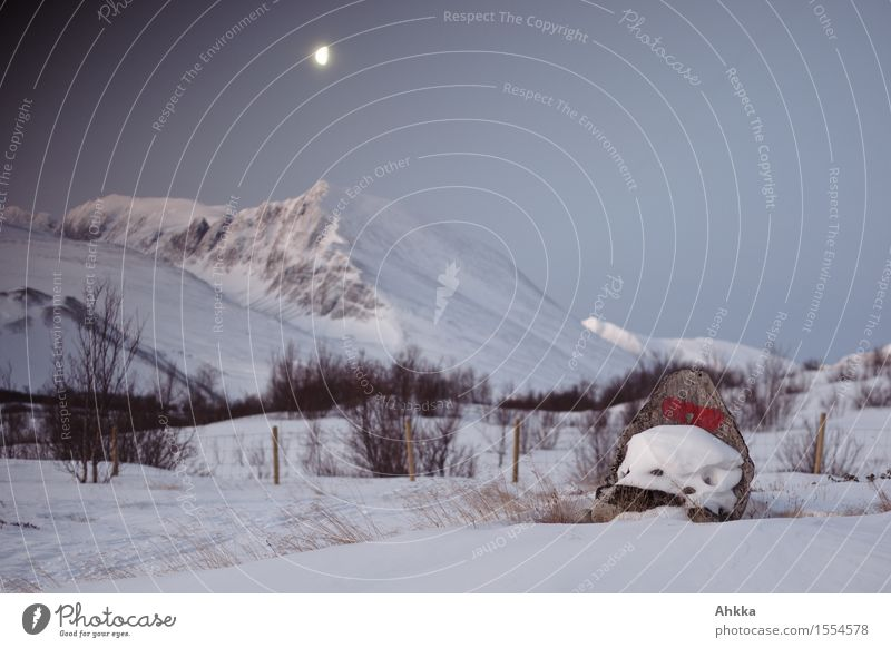 Rondane I Nature Landscape Cloudless sky Moon Winter Ice Frost Snow Mountain Peak Snowcapped peak Stand Illuminate Wild Trust Loneliness Uniqueness Peace Idyll