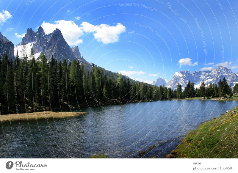mountain lake Vacation & Travel Mountain Environment Nature Landscape Elements Sky Summer Climate Beautiful weather Tree Meadow Forest Alps Peak Snowcapped peak