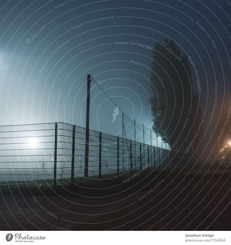 Blue Tree Cold Sadness Autumn Sports Fog Fear Gloomy Threat Fear of death Fence Pain Border Barrier Creepy