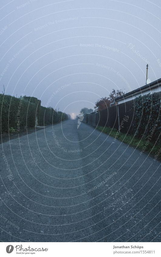 Sky Nature Blue Winter Environment Street Sadness Autumn Lanes & trails Gray Rain Fog Fear Gloomy Walking Asphalt