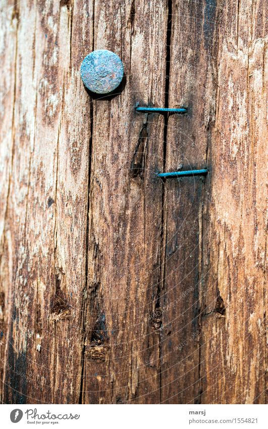 What good's that gonna do? Nail Staple Wood Rust Old Simple moored Stapler nail head Futile Useless Crack & Rip & Tear Texture of wood Weathered Patina