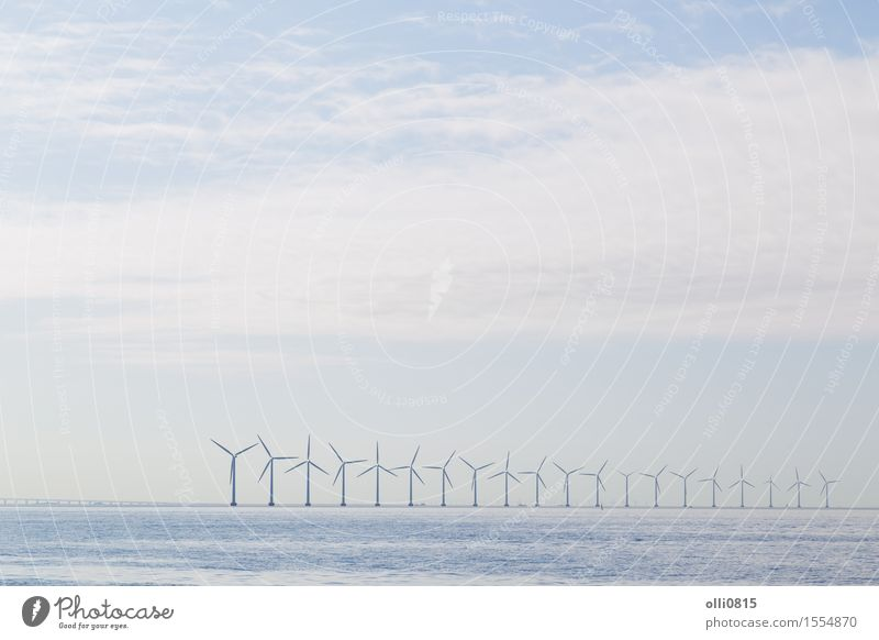 Wind power plants in the morning haze Nature Ocean Landscape Environment Line Technology Energy Europe Farm Environmental protection Scandinavia Innovative