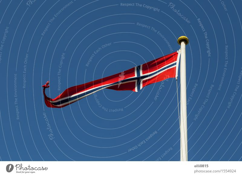 Norwegian Flag Sky Blue Summer Clouds Feasts & Celebrations Earth Wind Europe Symbols and metaphors Thin Long Flagpole Blue sky Norway Independence