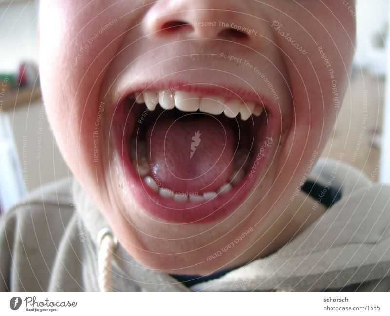 Shut the fuck up! Lips Child Human being Tongue Face Boy (child) my teeth Mouth Teeth